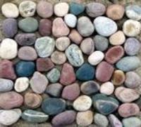 三磊牌的深圳鹅卵石价格鹅卵石产地鹅卵石用途-鹅卵石报价五彩鹅卵石厂家(图)