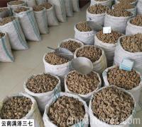云南满泽三七文山产地种植基地农户自产自销可打粉压三七片