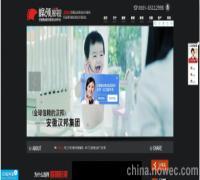 动画企业宣传片,淮南公司宣传片拍摄,峰领视频传媒(图)